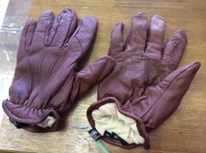 革手袋カビ処理ビフォー