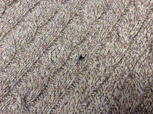 セーターの虫食い穴修理ビフォー