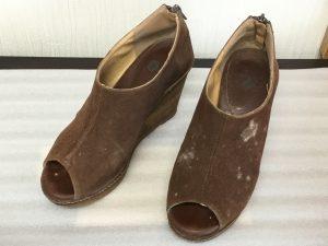 カビの発生したスエード靴ビフォー