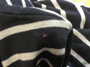 セーターの虫喰い穴ビフォー